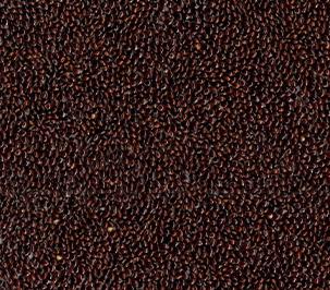 Black-Millet