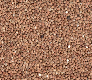 Buckwheat-Roasted-Kernel
